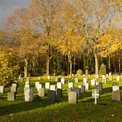 Obituaries Example Wording