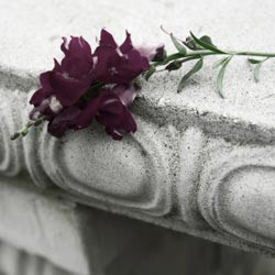 Example Eulogies For A Mother