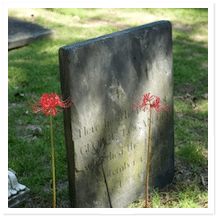 Burial Service Pros and Cons
