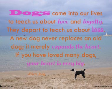 Erica Jong: Dogs come into our lives…