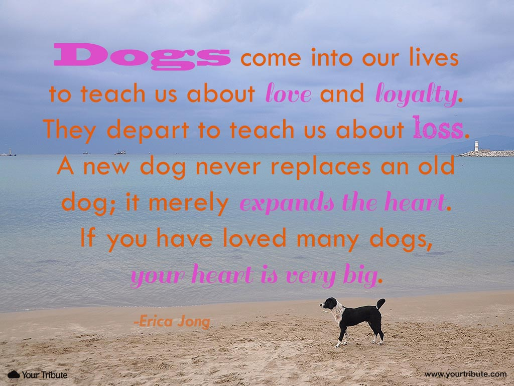 Loss of Dog | Quotes - Your Tribute