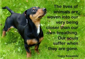 Gary Kowalski: The lives of animals…