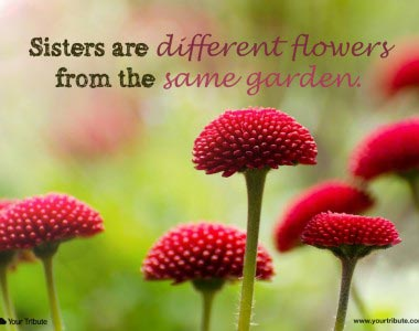 Sisters are different flowers…