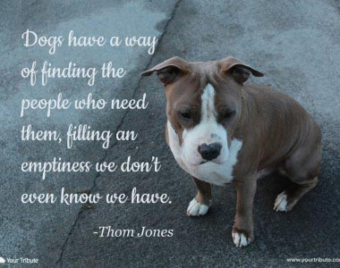 Thom Jones: Dogs have a way of…
