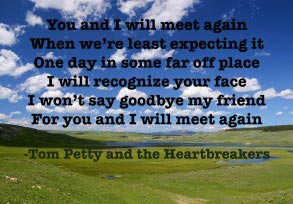 Tom Petty and the Heartbreakers: You and I will…