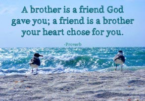 Proverb: A brother is a friend…